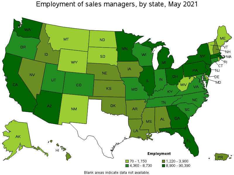 Sales Managers