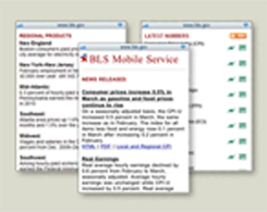 BLS Mobile Service
