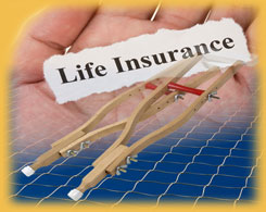 Program Perspectives on Life and Disability Insurance Benefits