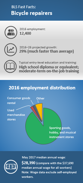 2016 employment: 12,400. 2016–26 projected growth: 29 percent (much faster than average). Typical entry-level education and training: High school diploma or equivalent; moderate-term on-the-job training. 2016 employment distribution: Sporting goods, hobby, and musical instrument stores (89.5%); used merchandise stores (2.4%); consumer goods rental (1.7%); other (6.4%)