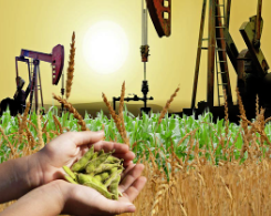 Crude oil prices and export agricultural commodities prices