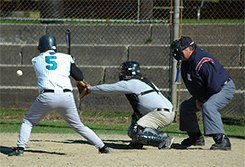Picture of baseball batter at the plate with catcher and umpire behind him.