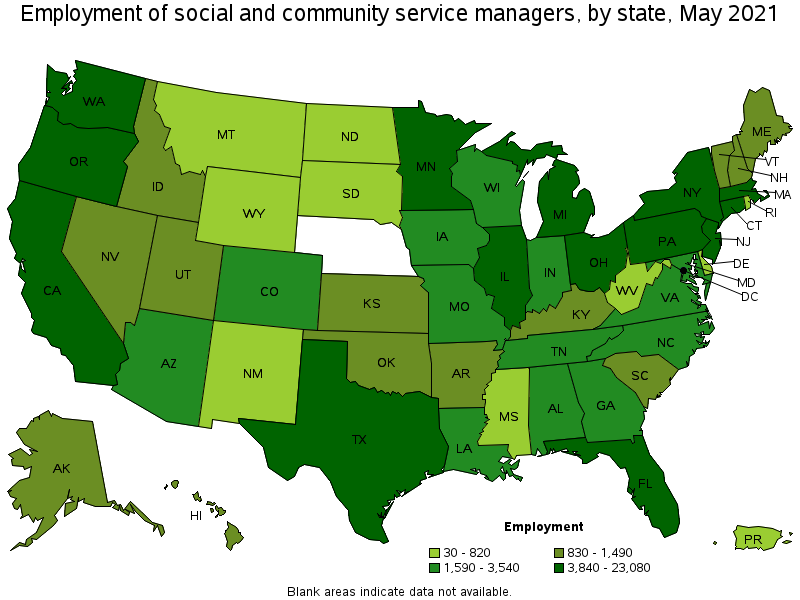social and community service managers