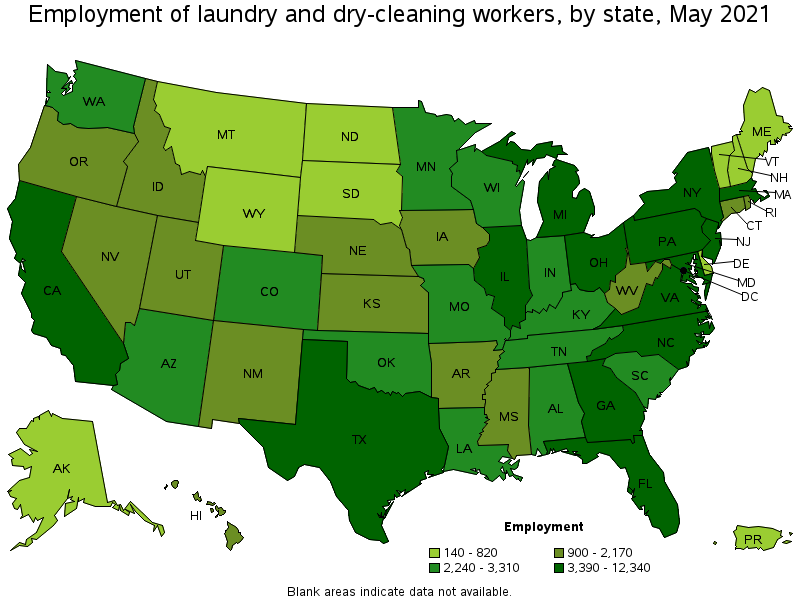 Laundry and Dry-Cleaning Workers