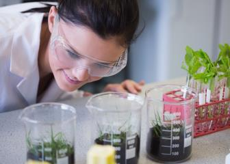 agricultural and food scientists image