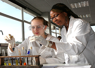 chemical technicians image