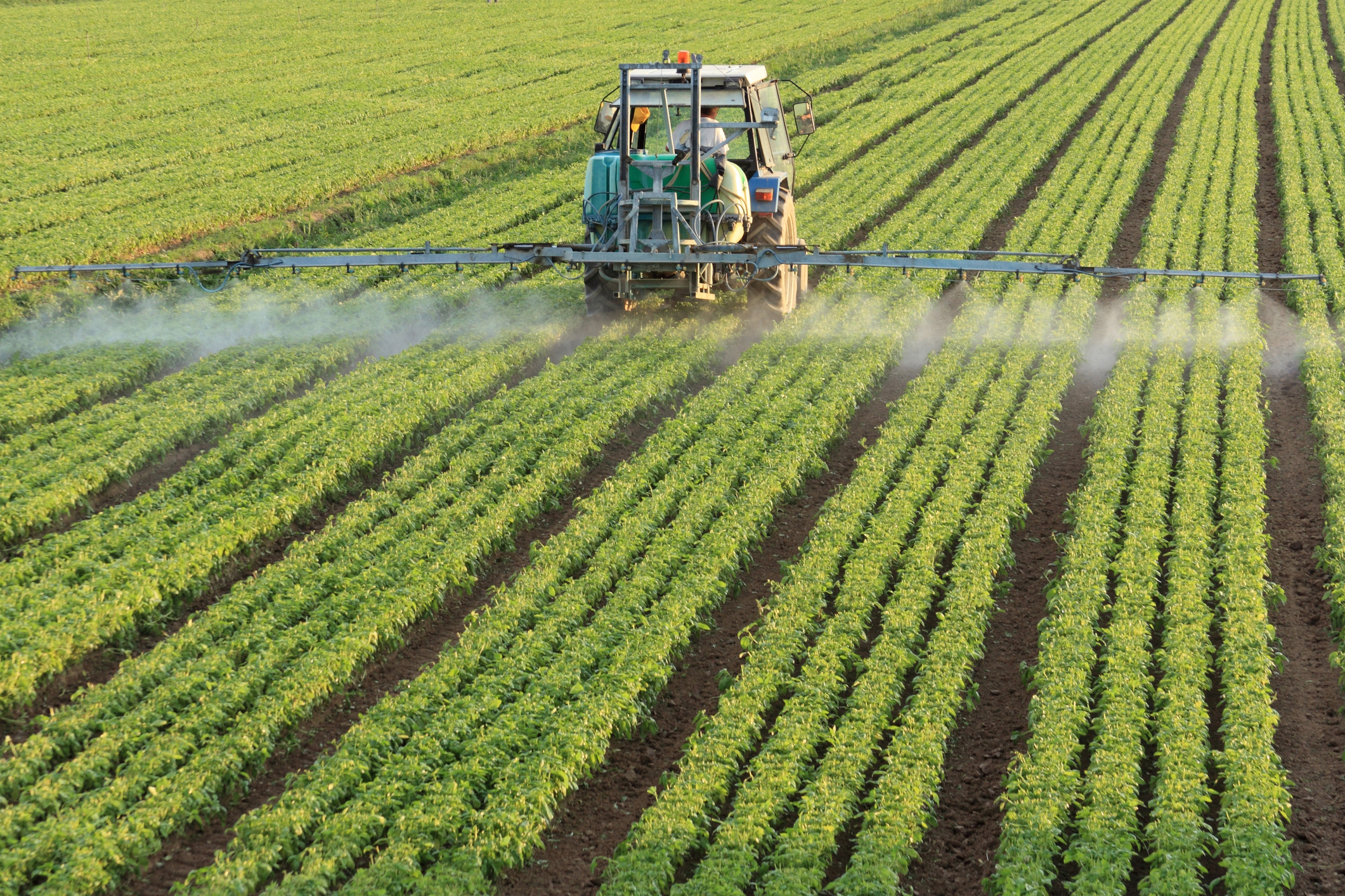 Growing demand for fertilizer keeps prices high : Beyond ...
