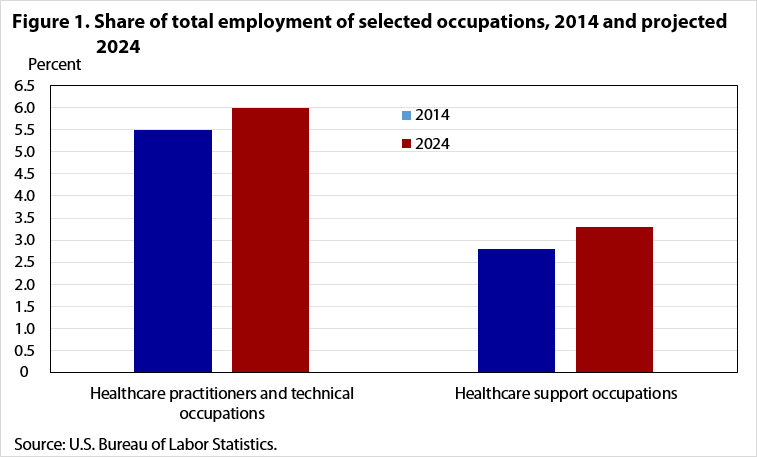Occupational Employment Projections To 2024 Monthly Labor Review