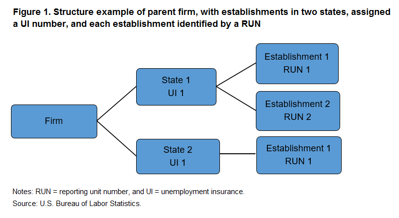 Figure 1. Structure example of parent firm, with establishments in two states, assigned a UI number, and each establishment identified by a RUN