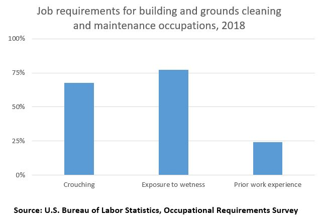 Job requirements for building and grounds cleaning and maintenance occupations